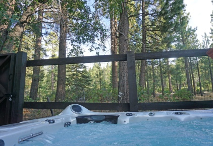 view from the spa of Forest